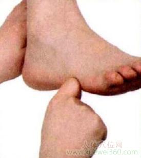 脚底穴位图(足内侧反射区)--肩按摩