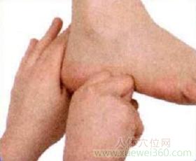 脚底穴位图(足内侧反射区)--肘按摩