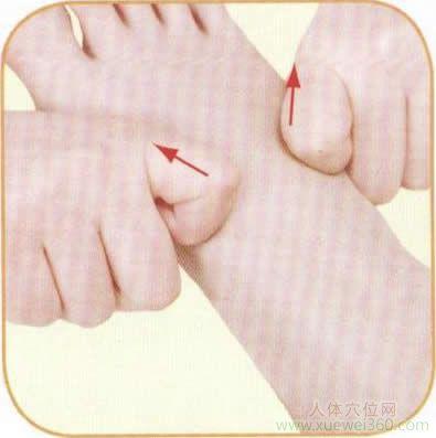 双食指刮压法