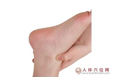 脚底穴位图(足内侧反射区)--下身淋巴腺按摩