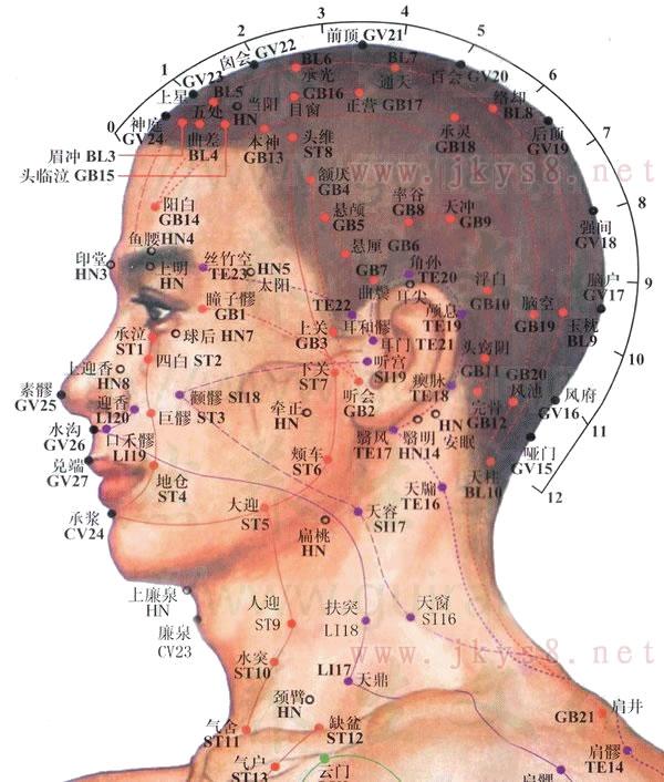 头部侧面穴位高清彩图