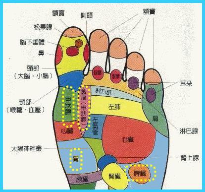 按摩脚底穴位反射区疗效好不好?