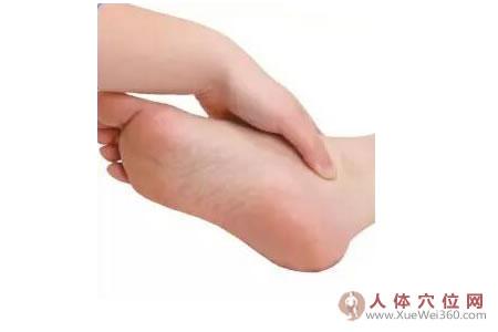 足内侧反射区–髋关节按摩手法