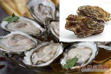 牡蛎中药图片