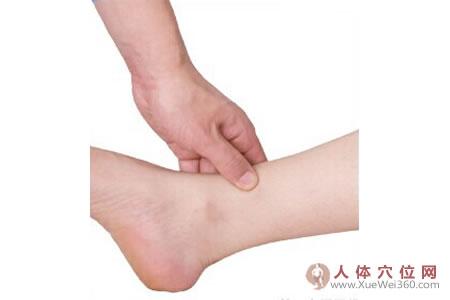 足内侧反射区–腹股沟按摩手法