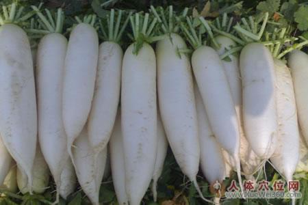 生吃白萝卜,能治过敏性鼻炎!