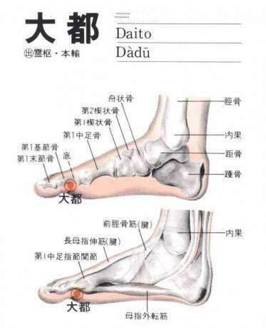 骨质疏松、腰腿痛,按大都穴