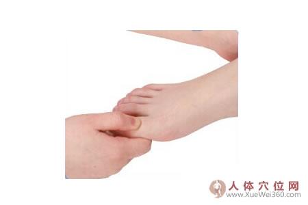 脚底穴位图(足背反射区)–上颌按摩法