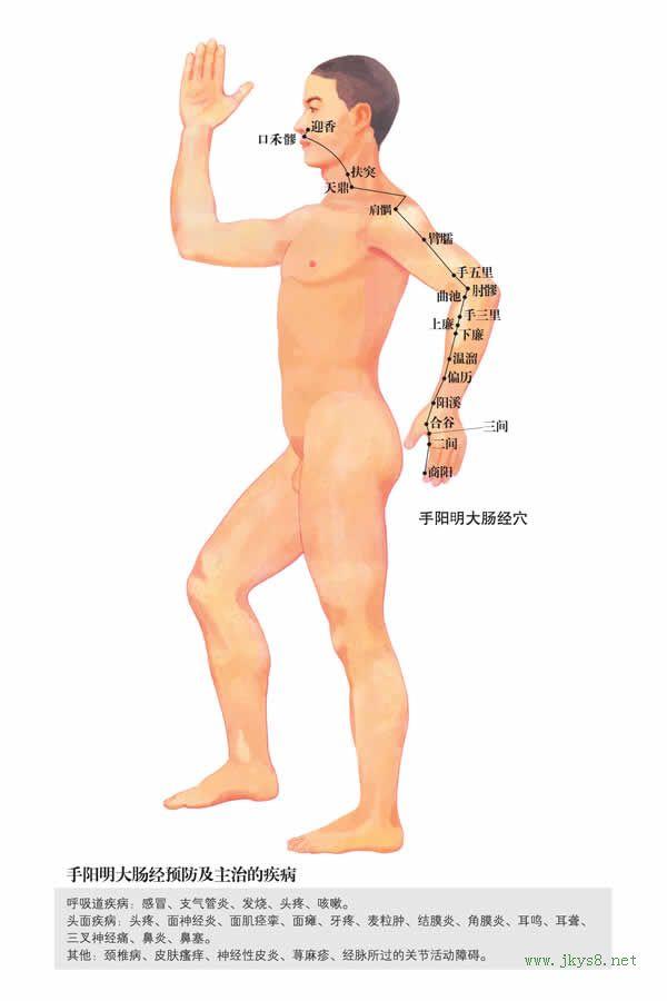 手五里穴:大肠经(图文)