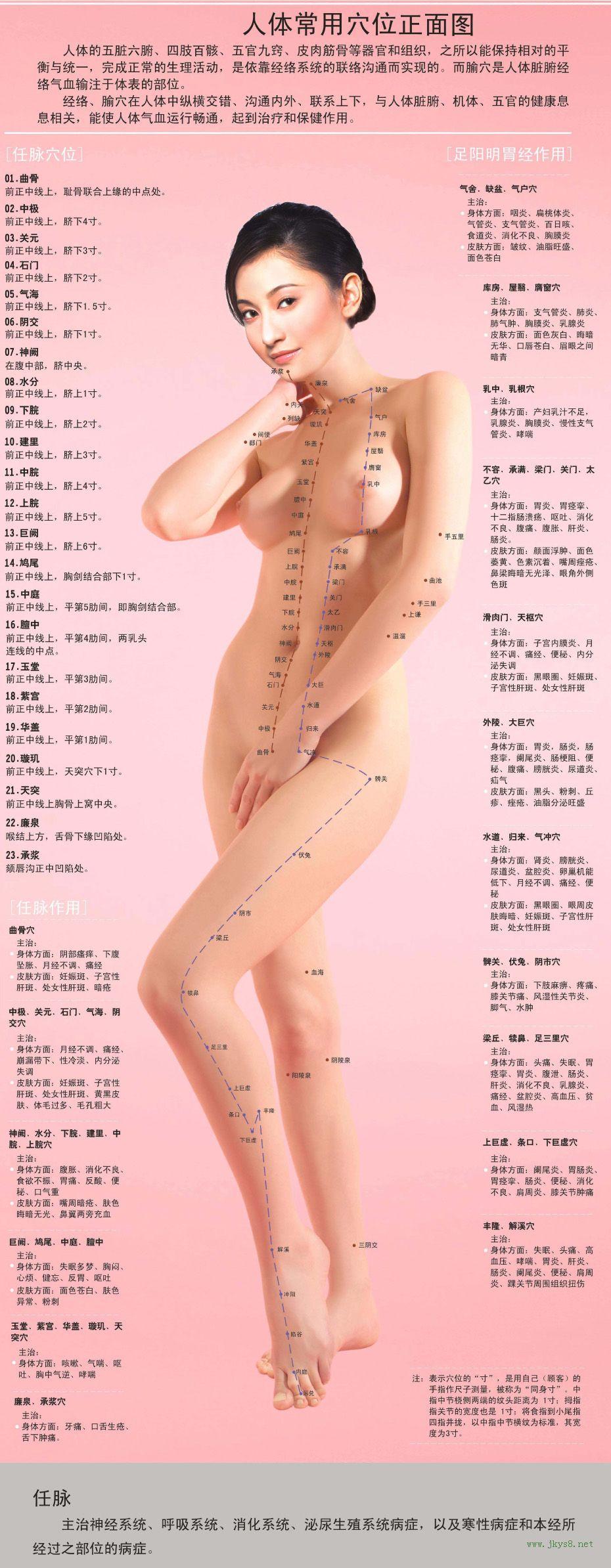 女性人体穴位图解大全【正面高清图下载】