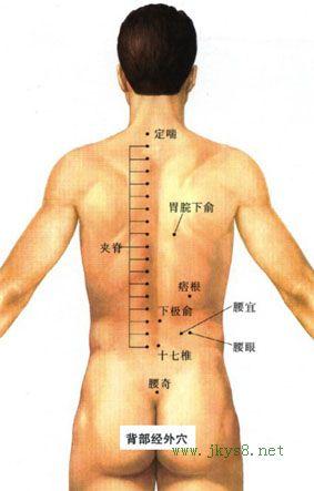 定喘穴位位置图-人体穴位查询