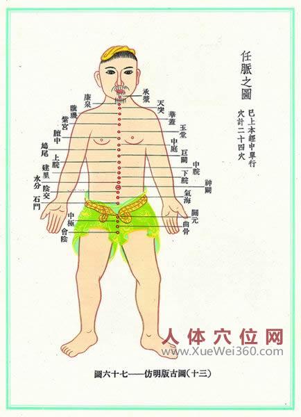 任脉经络图