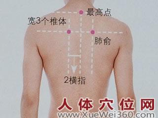 肺俞穴的准确位置图