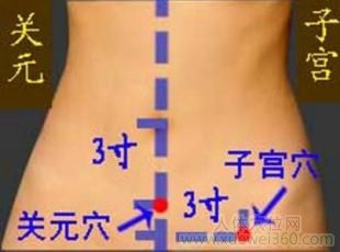 子宫穴位位置图