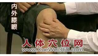 膝眼穴位位置图