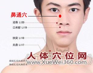 鼻通穴的准确位置图