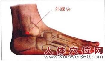 外踝尖穴位位置图