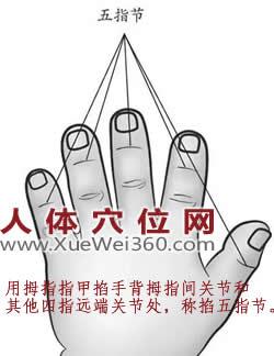 掐揉五指节的准确位置图