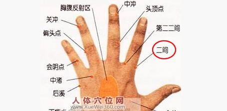 手背二间穴