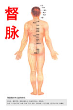 奇经八脉督脉图高清版人体穴位图