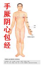 手厥阴心包经图高清版人体穴位图