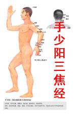 手少阳三焦经图高清版人体穴位图