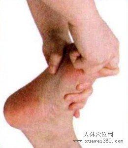 脚底穴位图(脚底反射区)--大脑按摩