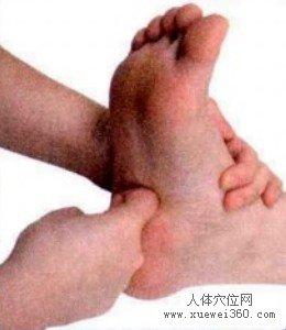 脚底穴位图(脚底反射区)--十二指肠按摩