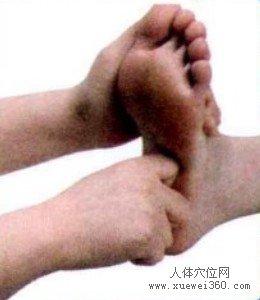 脚底穴位图(脚底反射区)--脾按摩