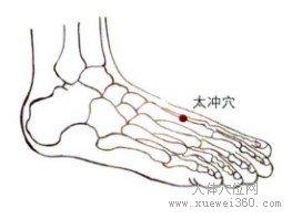 肝经的敲击位置图_太冲穴的准确位置图 功效与作用 - 肝经 - 经络穴位 - 人体穴位网