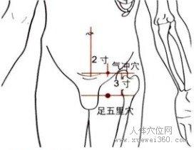 孕妇耻骨位置图_从耻骨联合上缘中点水平旁开3横指处是气冲穴.